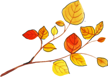 Autumn-Italian-Beginners-Course-Featured-image