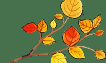 Autumn-Italian-Beginners-Course-Featured-image